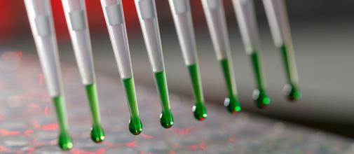 Contrato de Calibração e Manutenção de Micropipetas